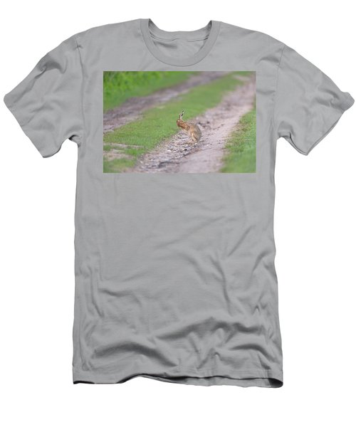 Brown Hare Cleaning Men's T-Shirt (Athletic Fit)