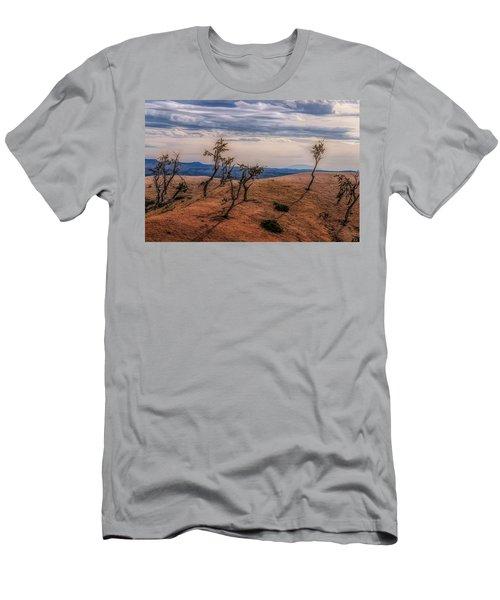 Bryce Landscape Men's T-Shirt (Athletic Fit)