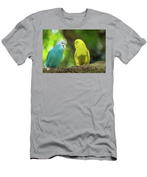 Budgie Buddies Men's T-Shirt (Athletic Fit)