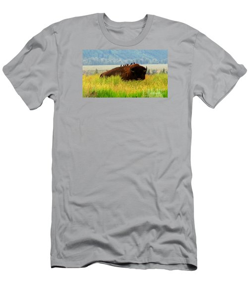 Buffalo Wings Men's T-Shirt (Athletic Fit)
