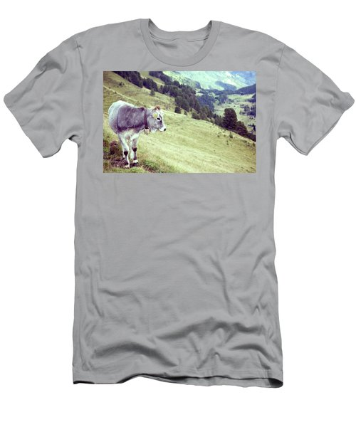 Bull Cow Grass Valley 114012 4368x2912 Men's T-Shirt (Athletic Fit)