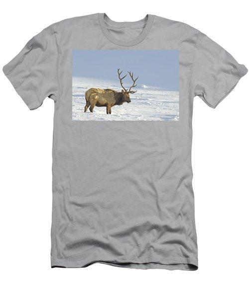 Bull Elk In Snow Men's T-Shirt (Athletic Fit)