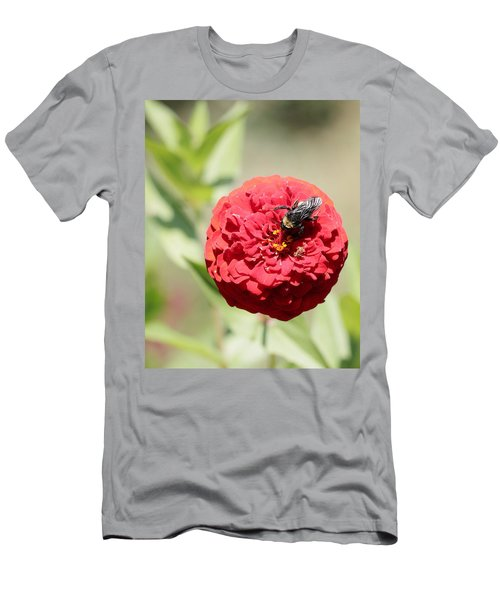Bumble Bee On Zinnia Men's T-Shirt (Athletic Fit)