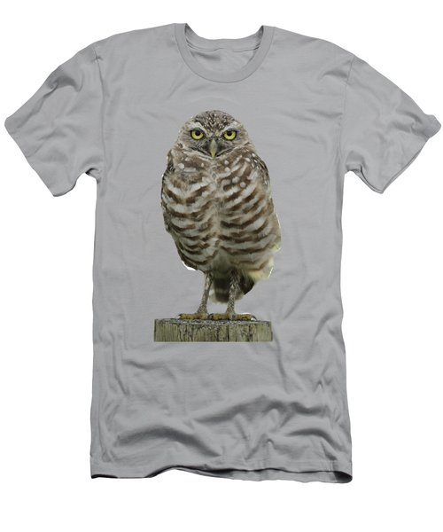 Burrowing Owl Lookout Men's T-Shirt (Slim Fit) by Bradford Martin