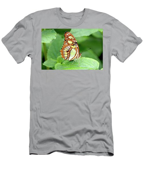 Butterfly On Leaf Men's T-Shirt (Slim Fit) by Meta Gatschenberger
