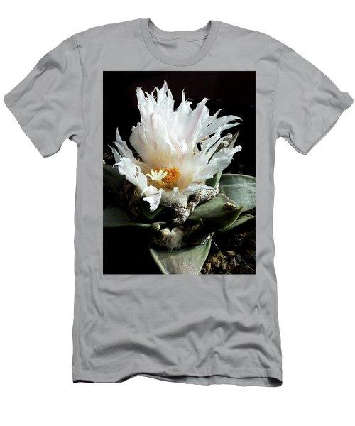 Cactus Flower 8 Men's T-Shirt (Athletic Fit)