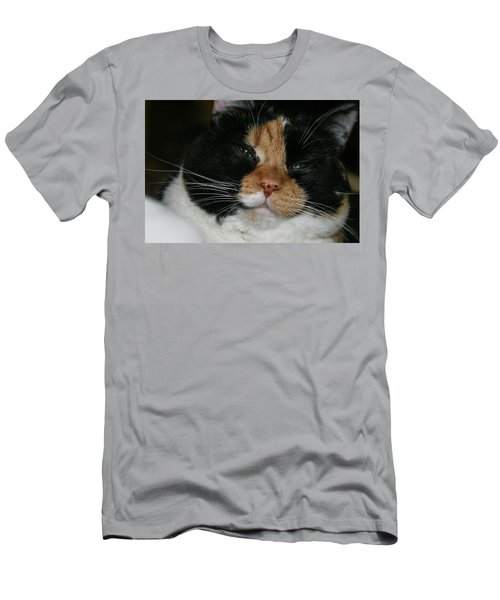 Cal-2 Men's T-Shirt (Athletic Fit)