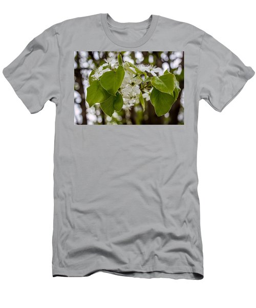 Callery Pear Tree Bloom Men's T-Shirt (Athletic Fit)