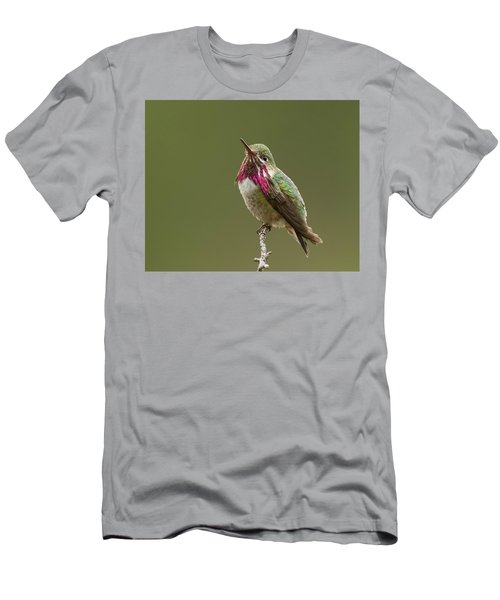 Men's T-Shirt (Slim Fit) featuring the photograph Calliope Hummingbird by Doug Herr