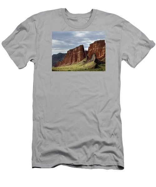 Capital Reef-cathedral Valley 9 Men's T-Shirt (Slim Fit) by Jeff Brunton