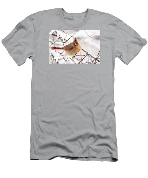 Men's T-Shirt (Slim Fit) featuring the photograph Cardinal Beauty by Trina Ansel