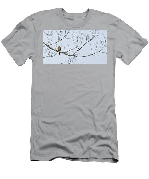 Men's T-Shirt (Slim Fit) featuring the photograph Cardinal In Tree by Richard Rizzo
