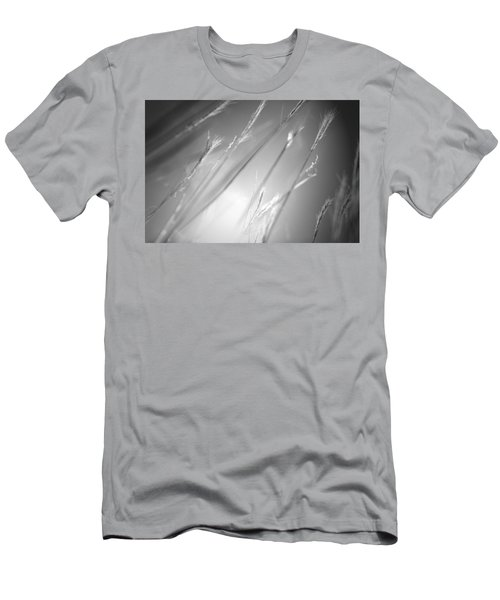 Casual Men's T-Shirt (Slim Fit) by Mark Ross