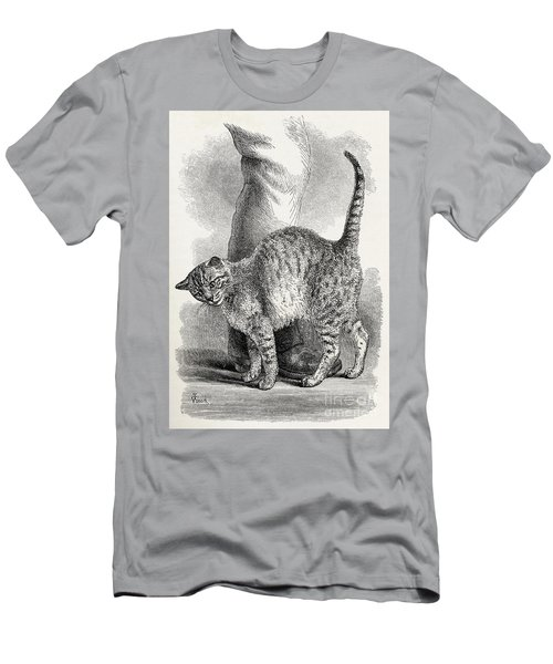 Cat In An Affectionate Frame Of Mind Men's T-Shirt (Athletic Fit)