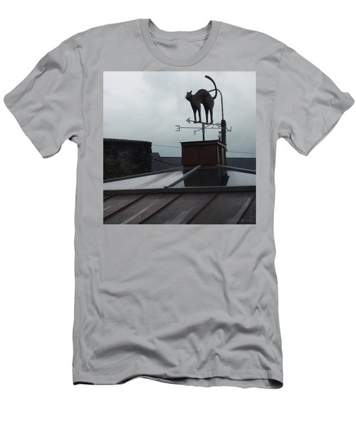 Cat On A Cool Tin Roof Men's T-Shirt (Athletic Fit)