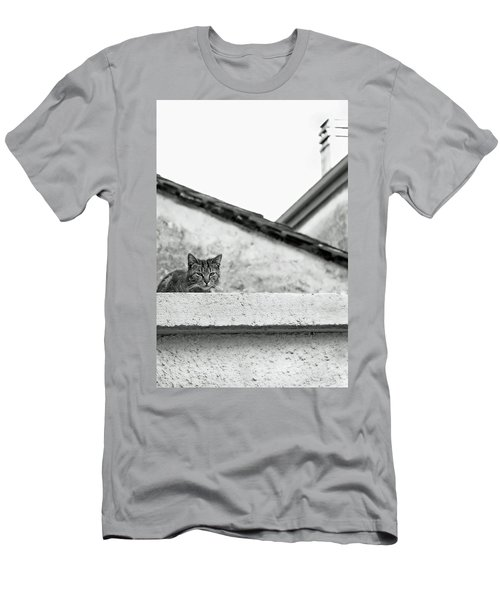 Cat On A Roof, Varenna Men's T-Shirt (Slim Fit) by Brooke T Ryan