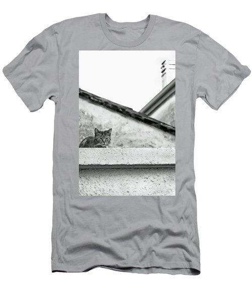 Cat On A Roof, Varenna Men's T-Shirt (Athletic Fit)