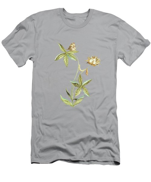 Caterpillar On A Cotton Plant With Butterfly By Cornelis Markee 1763 Men's T-Shirt (Athletic Fit)
