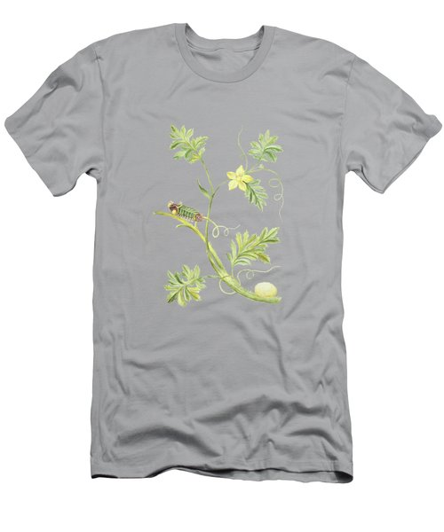Caterpillar With Pupa On A Plant By Cornelis Markee 1763 Men's T-Shirt (Athletic Fit)