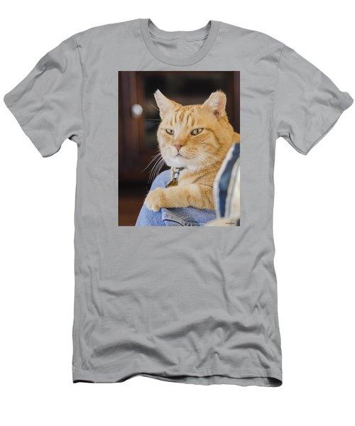 Charlie Cat Men's T-Shirt (Slim Fit) by Allen Sheffield