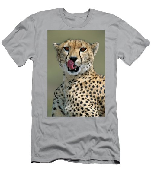 Cheetah Licking  Men's T-Shirt (Athletic Fit)