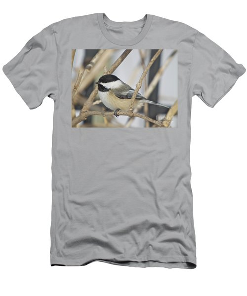 Chickadee-5 Men's T-Shirt (Athletic Fit)