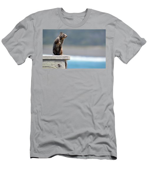 Chilly Squirrel Men's T-Shirt (Athletic Fit)