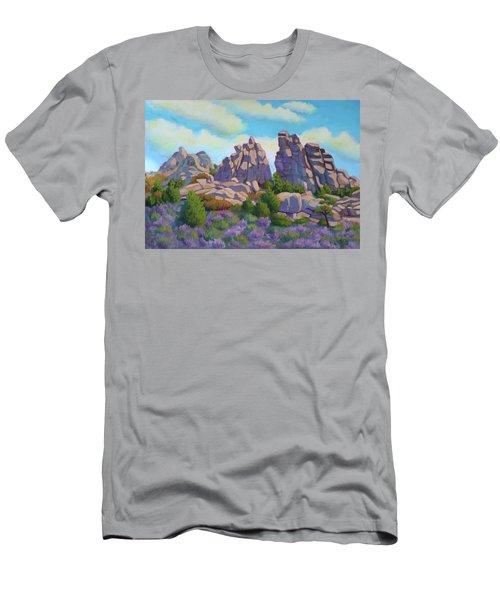 City Of Rocks Men's T-Shirt (Athletic Fit)
