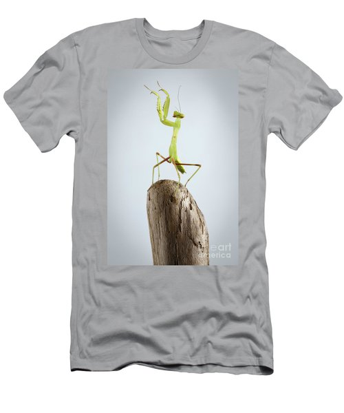 Men's T-Shirt (Athletic Fit) featuring the photograph Closeup Green Praying Mantis On Stick by Sergey Taran