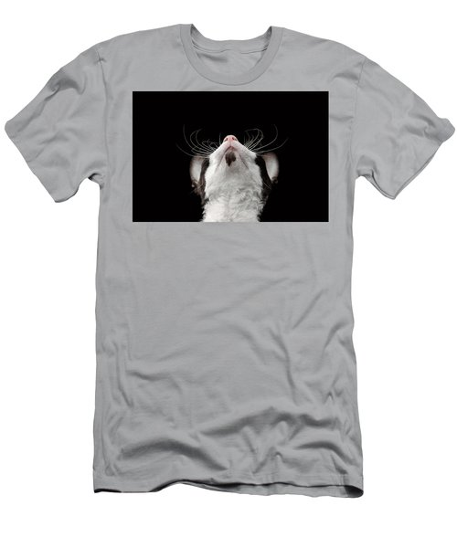 Closeup Portrait Of Cornish Rex Looking Up Isolated On Black  Men's T-Shirt (Athletic Fit)