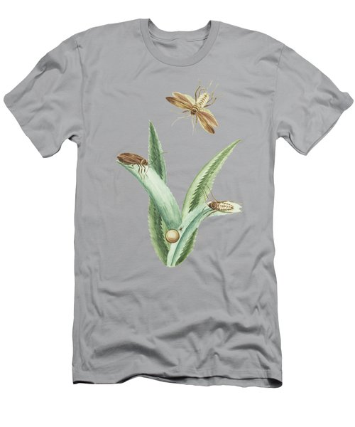 Cockroaches With An Egg On Ananas Leaves By Cornelis Markee 1763 Men's T-Shirt (Athletic Fit)