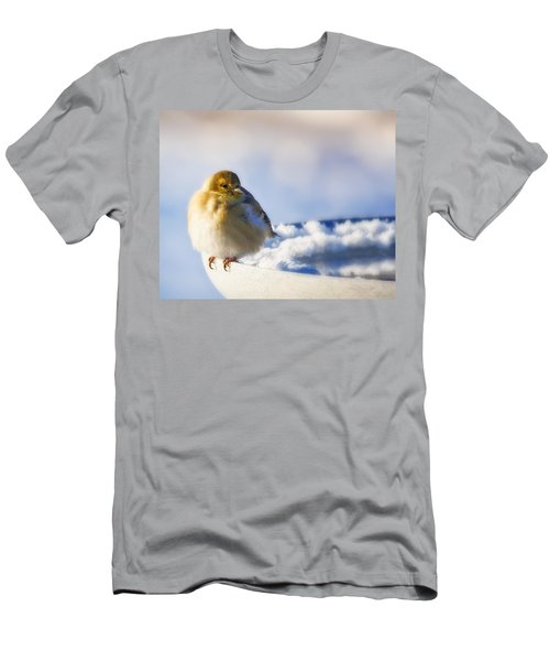 Cold American Goldfinch Men's T-Shirt (Athletic Fit)