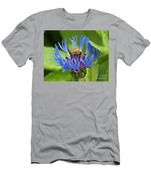 Collecting Pollen Men's T-Shirt (Athletic Fit)