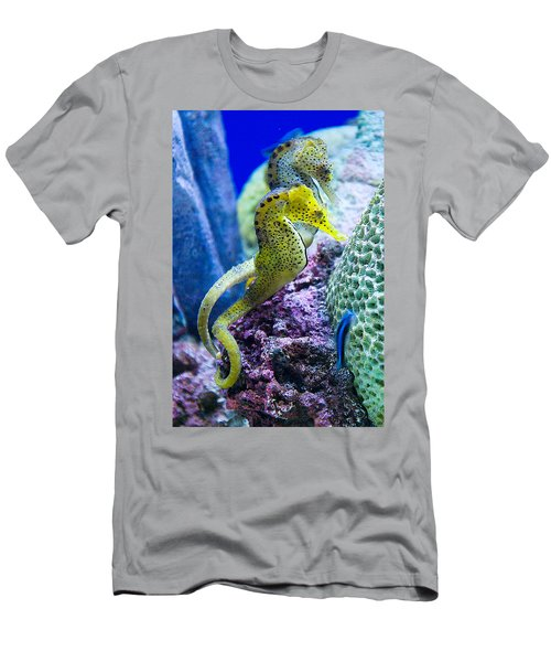 Colorful Seahorses Men's T-Shirt (Athletic Fit)