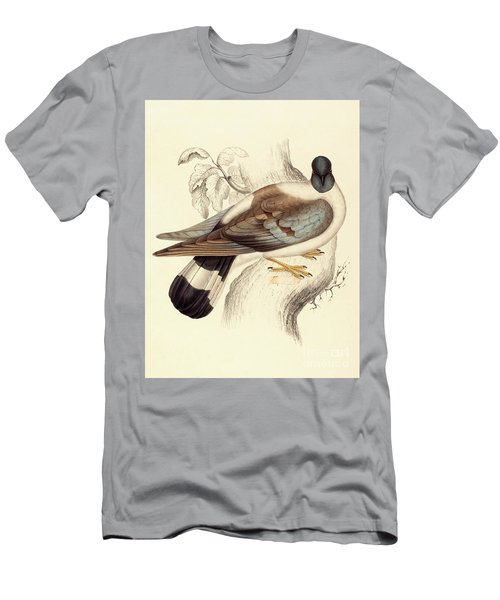 Columba Leuconota, Snow Pigeon Men's T-Shirt (Slim Fit) by Elizabeth Gould