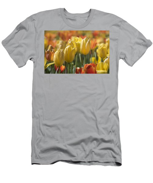 Coming Up Tulips Men's T-Shirt (Athletic Fit)