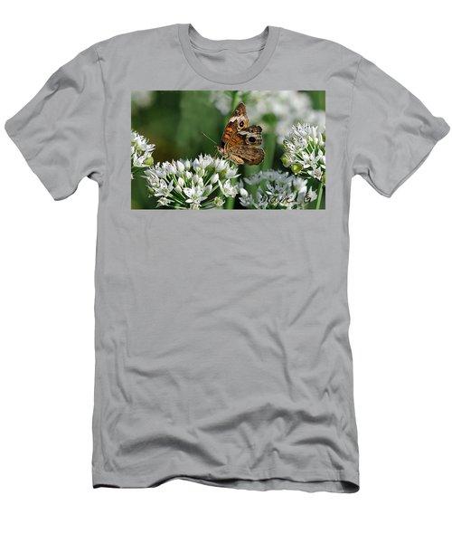 Common Buckeye Butterfly Men's T-Shirt (Slim Fit) by Diane Giurco