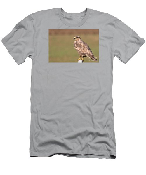 Men's T-Shirt (Slim Fit) featuring the photograph Common Buzzard Along The Highway Nis Budapest by Jivko Nakev
