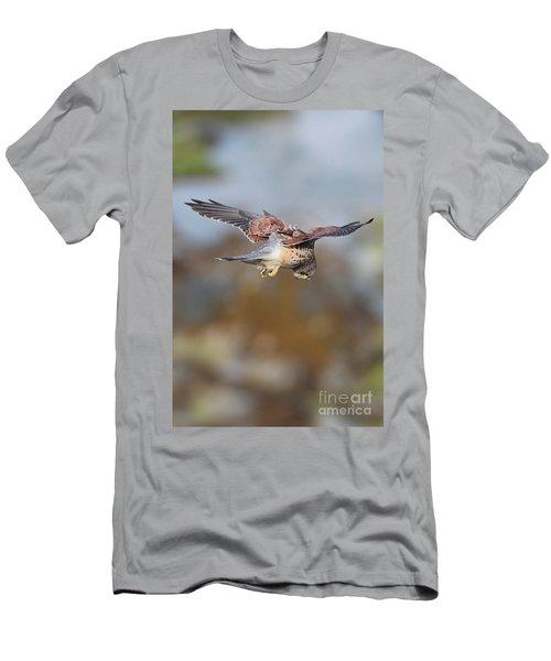 Men's T-Shirt (Slim Fit) featuring the photograph Cornish Kestrel Hunting 2 by Nicholas Burningham