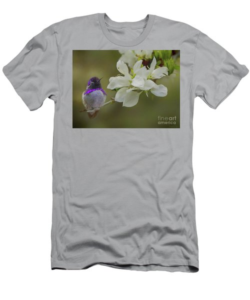 Costas Hummingbird On An Anacacho Orchid Branch Men's T-Shirt (Athletic Fit)