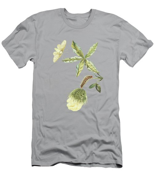 Cotton Plant With Flower Caterpillar And Butterfly By Cornelis Markee 1763 Men's T-Shirt (Athletic Fit)