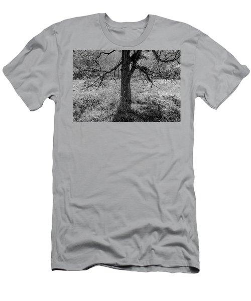 Coulee Oak Men's T-Shirt (Athletic Fit)