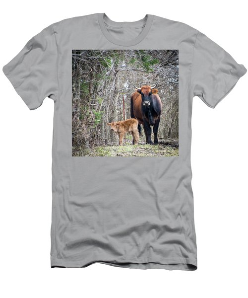 Cow And Calf Men's T-Shirt (Athletic Fit)