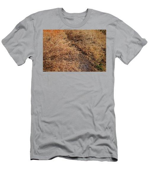Coyote Brush Men's T-Shirt (Athletic Fit)