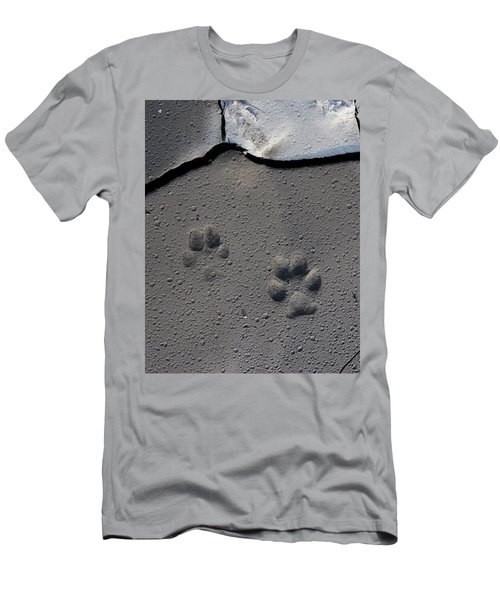 Coyote Tracks Men's T-Shirt (Athletic Fit)