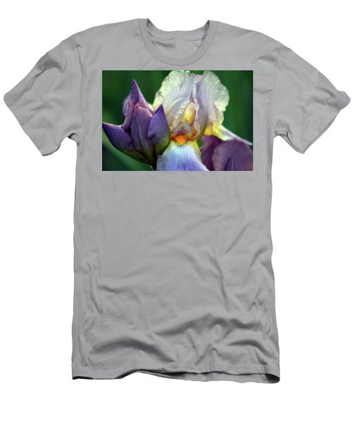 Cream And Purple Bearded Iris With Bud 0065 H_2 Men's T-Shirt (Athletic Fit)