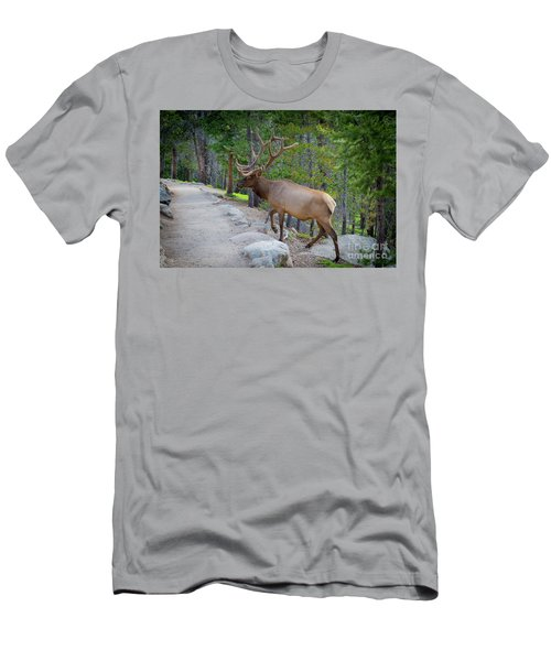 Crossing Paths With An Elk Men's T-Shirt (Athletic Fit)