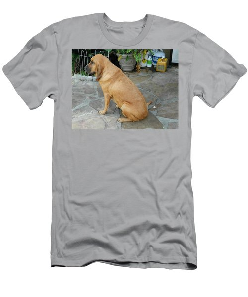 Cujo Sitting Around Men's T-Shirt (Slim Fit) by Val Oconnor