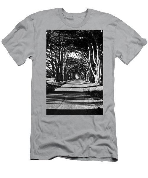 Cypress Tree Tunnel Men's T-Shirt (Athletic Fit)