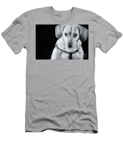 Dachshund Lab Mix Men's T-Shirt (Slim Fit) by Stephanie Hayes